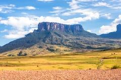 Berg Roraima lizenzfreies stockfoto