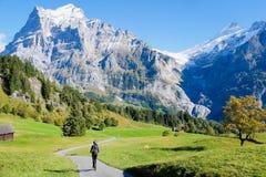 Berg runt om Grindelwald Royaltyfria Foton