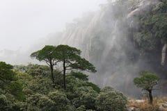 Berg Sanqingshan Stockbilder