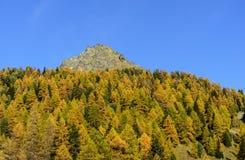 Berg Sarezza (Ayas-Tal, Nord-Italien) Stockfotos