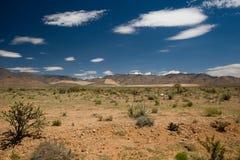 Berg Scape in de Woestijn Mojave Royalty-vrije Stock Foto