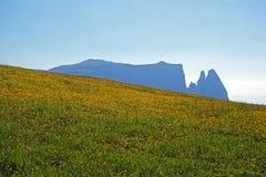 Berg Schlern auf dem Seiser-alm stockfotografie