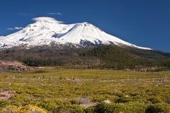 Berg Shasta Kalifornien Stockfoto
