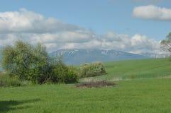 Berg sikter av den västra Tatrasen Fotografering för Bildbyråer