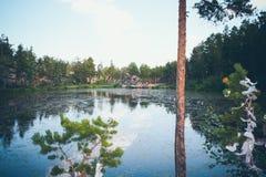 Berg sjö i bakgrunden av berg och himmel Royaltyfria Bilder
