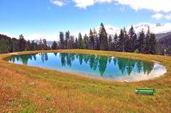 Berg sjö i skogen Arkivfoto