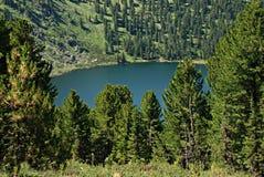 Berg sjö Karacol, Altai, Ryssland Arkivfoto