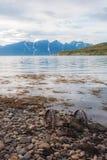Berg sjö med den gamla spårvagnen arkivbilder