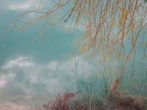 Berg sjö med turkosblått vatten och reflexion av filialer i vattnet arkivfoto