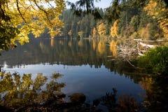 Berg sjö och färgrika träd under höstnedgångsäsong Arkivbild