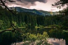 Berg sjö under sommar som omges av kullar och träd Royaltyfri Foto