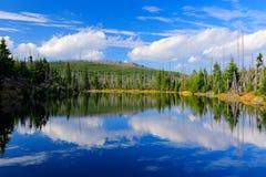 Berg sjö under sommardag, skövlad skog bayerska Forest National Park Härligt landskap med blå himmel och moln, Ge arkivbild