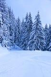 Berg skidar semesterorten Zell-förmiddag-Ser Österrike Arkivfoto