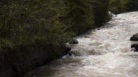 Berg snelle rivier stock video