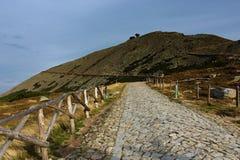 Berg Snezka Lizenzfreies Stockbild