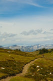Berg som cyklar på Frisby Ridge Trail Royaltyfria Bilder
