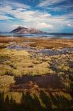 Berg som en bakgrund som reflekterar i vattnet Royaltyfri Fotografi