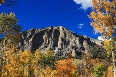 Berg som omges av asp- träd arkivbilder