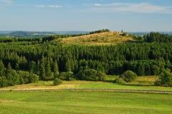 Berg som omges av träd Arkivbilder