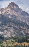 Berg som står högt ovanför en skog på dess lutningar Royaltyfri Foto