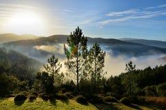 Berg som täckas av dimma arkivbild