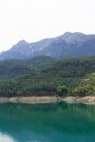 Berg som täckas av pinjeskogar som stiger ned till sjön Arkivbild