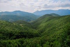 Berg som täckas med skogen under molnig himmel Fotografering för Bildbyråer