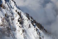 Berg som täckas med snö och moln och träd arkivbild