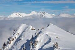 Berg som täckas med snö och moln och träd royaltyfri fotografi