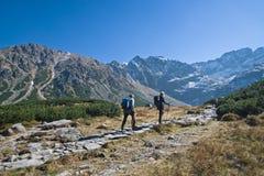 berg som trekking Arkivfoto