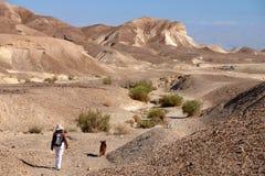 Berg som trekking i den Judea öknen arkivbild