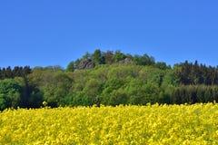Berg-spitzberg im Sachsen Stockfotografie