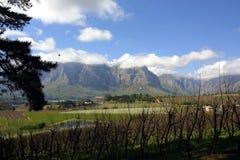 berg stellenbosch Royaltyfri Foto