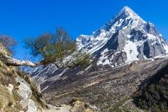 Berg Sudarshan - indischer Himalaja Stockfotografie