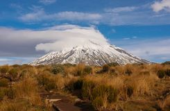 Berg Taranaki, Berg Nationalpark Egmont, Neuseeland Stockbild