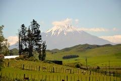 Berg Taranaki-stratovolcano stockfotos