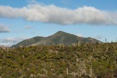 Berg Tarawera in Rotorua lizenzfreies stockfoto