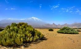 Berg Teide der Kanarischen Inseln Stockfotos