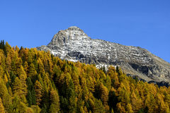 Berg Testa Grigia (Ayas-Tal, Nord-Italien) Stockfotos