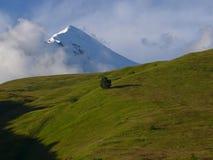 Berg Tetnuldi, georgischer Kaukasus Stockfotografie