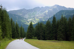 berg till långt Royaltyfria Foton