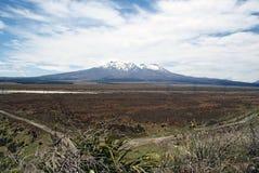 Berg Tongariro Stockbild