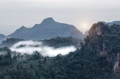 Berg, träd och dimma, härligt landskap royaltyfria foton