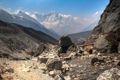 Berg-trai, das einen kleinen Fluss auf dem bridgel in schneidet Stockfoto