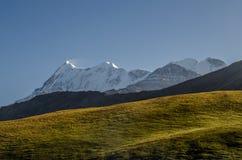 Berg Trishul, wie von Bedni Bugyal gesehen Lizenzfreie Stockfotos