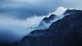 Berg tussen mist stock foto's