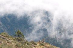 Berg und Baum auf einem Hintergrund von Wolken in Nepal Stockfotos