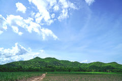 Berg und Feld mit blauem Himmel Lizenzfreies Stockfoto