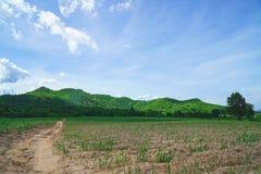 Berg und Feld mit blauem Himmel Lizenzfreie Stockfotografie