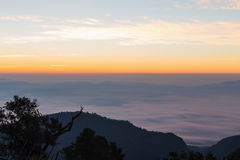 Berg und Nebel an der Dämmerung Lizenzfreies Stockfoto